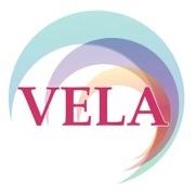 VELA Clinical Data Program